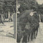 Preisverleihung durch Marianne Koch und Hans Sachs auf dem Deutsch-Amerikanischen Volksfest. -- Bild: Archiv Kultur- und Militärmuseum Grafenwöhr