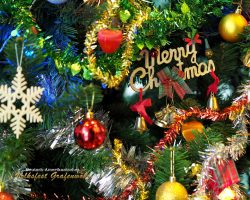 Merry Christmas wünscht volksfest-grafenwoehr.de